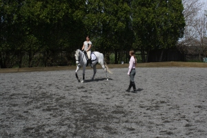 """Learning to ride better is the best way to love your horse.""  JP Giacomini"
