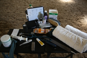 A few of the items you should have in your first aid kit.